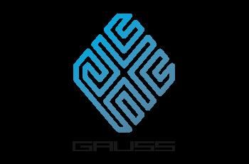 Logo Gauss Project HOCHSCHULE DARMSTADT